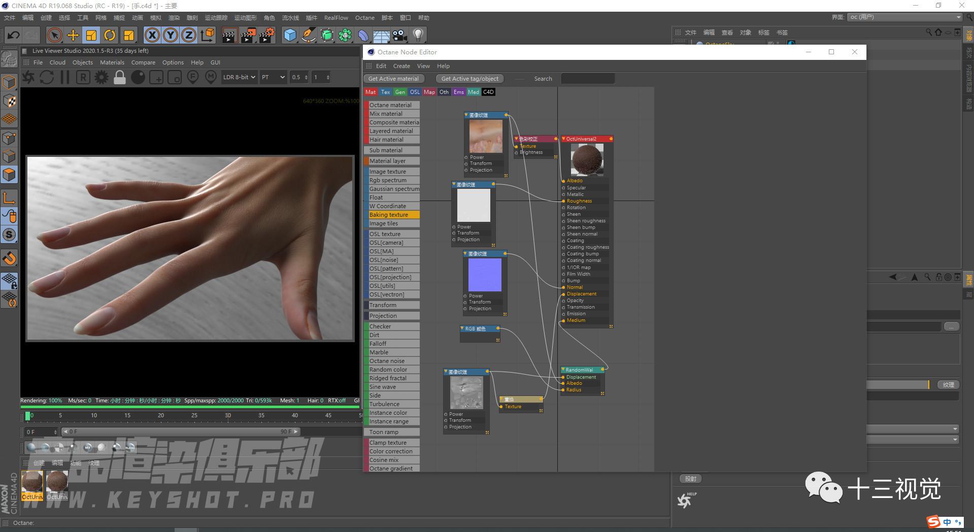 如何利用OC渲染器2020制作一张好看的人手