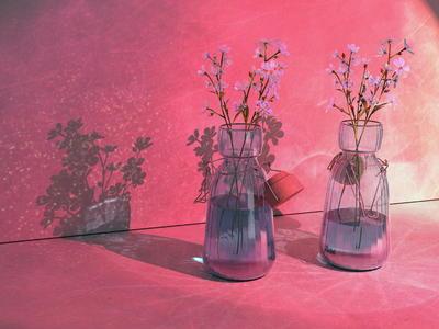 第一期:《焦散》keyshot中文网两周一练-花瓶