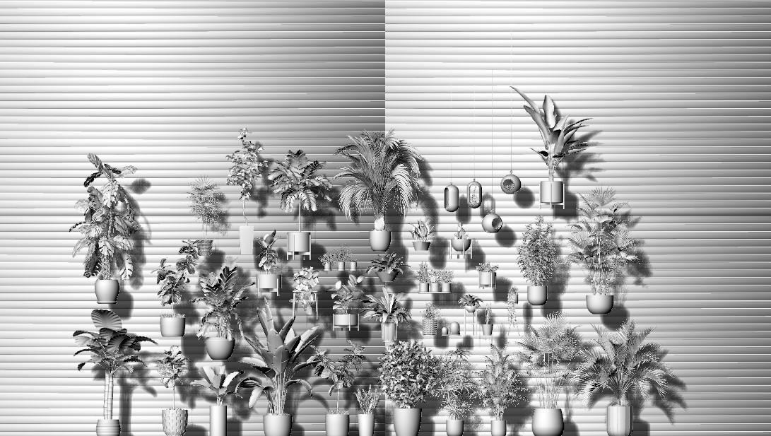 大量的精美植物3DM模型图