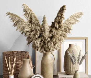 桌面装饰摆件植物3D模型